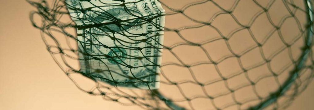 money in net