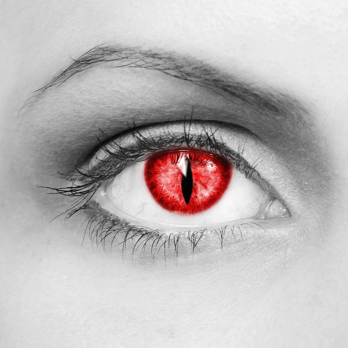 The eye of the vampire